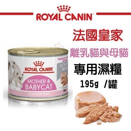 『寵喵樂旗艦店』法國皇家《離乳貓與母貓專用濕糧BC34W》195g/罐 貓糧/貓罐 可當主食/可拌飼料