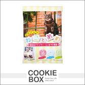 【即期品】日本 PINE 派恩 可愛 貓咪糖 水果糖 糖果 零食 80g *餅乾盒子*
