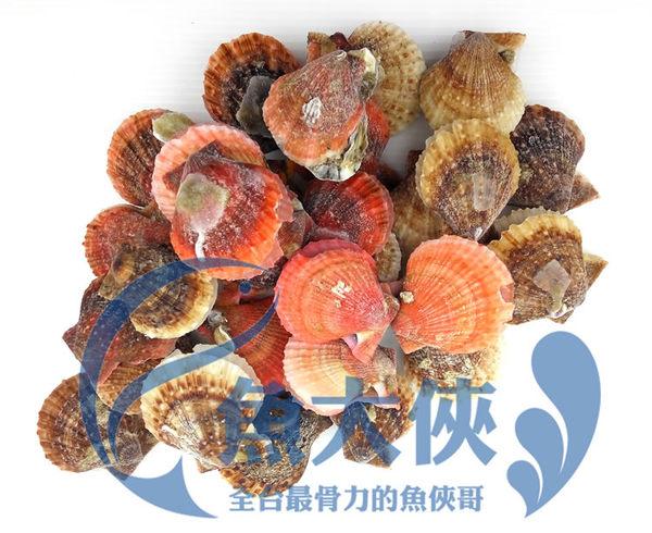 D2【魚大俠】BC026生凍全殼櫛孔貝(6-8cm/顆/約30顆/900g/包)