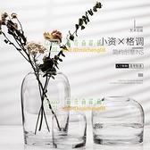 玻璃花器花瓶創意客廳餐桌家居鮮花插花瓶工藝品【樹可雜貨鋪】