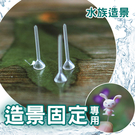 ⭐星星小舖⭐台灣出貨 魚缸造景固定用塑膠棒 造景固定棒 魚缸造景 水族造景 造景