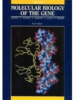 二手書博民逛書店 《Molecular Biology of the Gene, Volume II (4th Edition)》 R2Y ISBN:0805396136│Watson