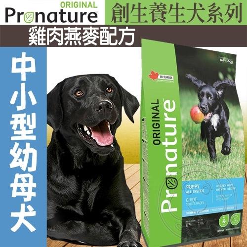 【🐱🐶培菓寵物48H出貨🐰🐹】創鮮Nature》養生犬系列中小型母幼犬雞肉燕麥配方飼料-0.34kg