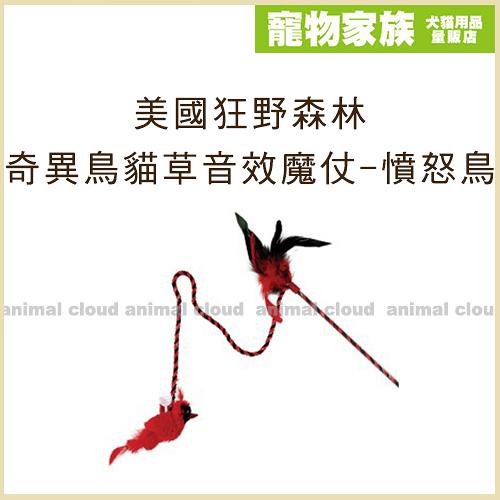 寵物家族-美國Play-N-Squeak狂野森林 奇異鳥系列貓草音效魔仗-憤怒鳥