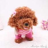 玩具 兒童電動毛絨玩具狗狗會唱歌跳舞模擬泰迪牽繩走路電子小狗機器狗  YXS交換禮物