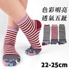 【衣襪酷】日式造型五趾襪 條紋黑貓款 伍洋