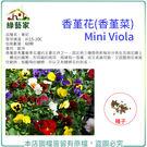 【綠藝家】H45.香堇花種子60顆...