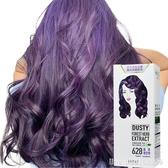 臺灣舒妃sofei霧感星空紫色鉛筆灰藍黑色染髮劑膏植萃護髮染髮霜 城市科技