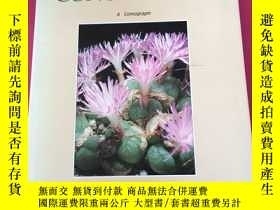 二手書博民逛書店the罕見genus conophytumY341949 Ste
