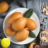 【果之蔬-全省免運】台灣嚴選枇杷L號X1盒18-24入(500g±10%含盒重/盒)
