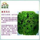 【綠藝家】大包裝A20.綠葉皺葉萵苣種子...