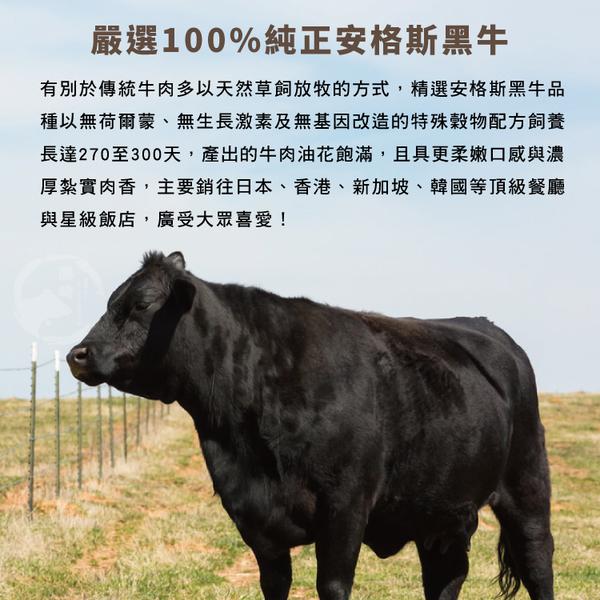 【免運直送】美國安格斯Choice肋眼牛排5片組(200公克/1片)