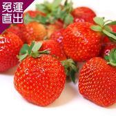 愛上水果 日本空運草莓禮盒*1組(2小盒/500g/約16-20顆/組)【免運直出】