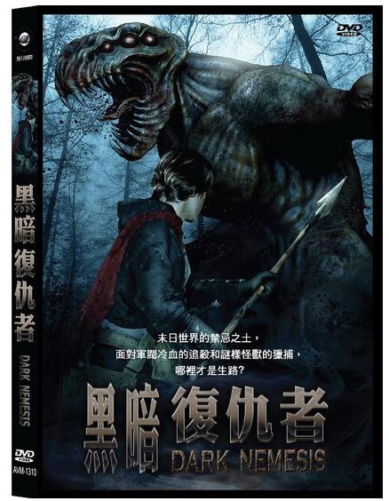 黑暗復仇者DVD