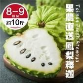 【果農直送-全省免運】巨無霸 台東鳳梨釋迦x1盒(8-9顆/10台斤±10%)