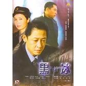 黑冰DVD (全20集/2片裝) 王志文/蔣雯麗