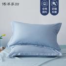 家紡純棉全棉抑菌磨毛枕套單雙人枕芯套48x74cm枕頭套一對裝 夢幻小鎮
