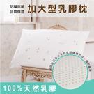 枕頭/ 乳膠枕-防蟎抗菌加大型乳膠枕1入...