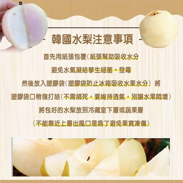 【果之蔬-全省免運】嚴選韓國大顆水梨禮盒X1盒(10顆/盒 每顆約400g±10%)