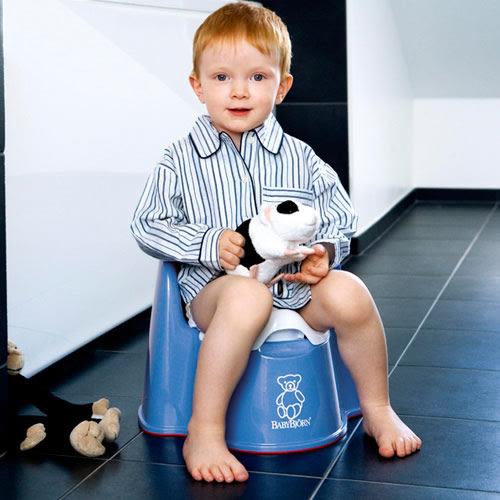 【奇哥】BabyBjorn 便器椅 (湛藍)