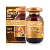 來而康 綠芙特級 頂級蜂王乳活妍軟膠囊EX(90顆/瓶)