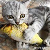 貓玩具貓薄荷仿真鯉魚草魚毛絨抱枕小貓咪逗貓棒寵物貓貓用品 晴川生活馆