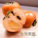 沁甜果園SSN.高山甜柿8A禮盒(6粒裝)﹍愛食網