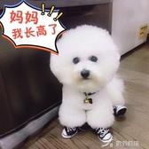 寵物鞋 小狗狗鞋子不掉冬季一套4只小型中型犬泰迪比熊博美寵物防水四季 樂芙美鞋