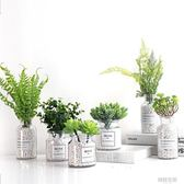 北歐盆栽仿真植物假多肉綠植ins家居客廳室內窗台裝飾創意小擺件 韓語空間