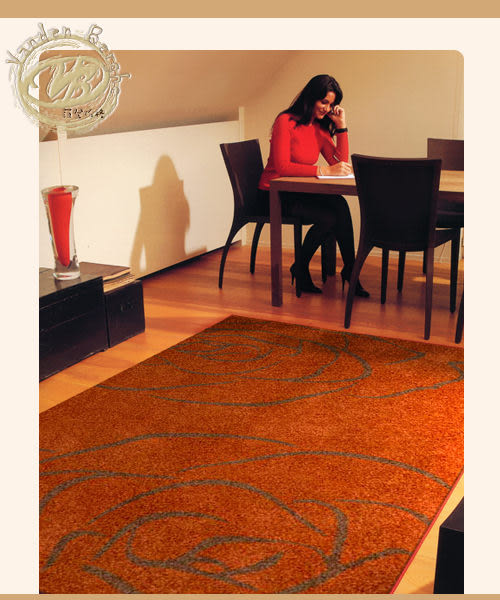 范登伯格-韻緻★知性悠美厚織地毯-200x290cm