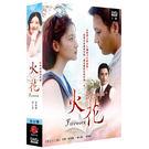 韓劇 - 火花DVD【雙語版】 (全32...