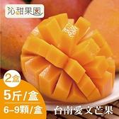 沁甜果園SSN.台南愛文芒果6-9粒裝/5台斤/盒,(共二盒)﹍愛食網