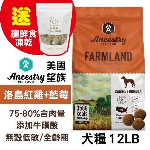 48H出貨送寵鮮食凍乾X1 Ancestry 美國望族 天然犬糧(無穀系列)洛島紅雞+藍莓 12LB/包