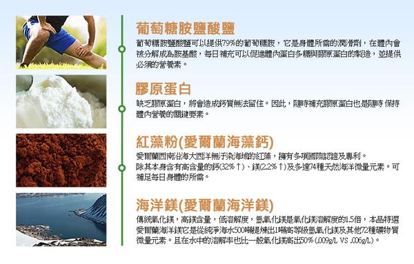 草本之家-鈣補力葡萄糖胺綠貽貝複方膠囊100粒
