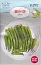 [黃秋葵種子] 各式觀賞花卉種子 香草種子 蔬菜水果種子 . 單買種子。郵局運費40元起