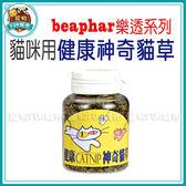 *~寵物FUN城市~*beaphar樂透-貓咪用 健康神奇貓草10g【特價69元/罐!】