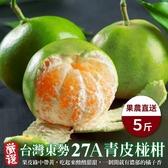 【果農直配-全省免運】 嚴選台灣東勢27A青皮椪柑 【5台斤±10%/箱】