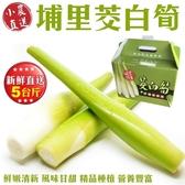 【小農直送-全省免運】 新鮮現採埔里茭白筍x5台斤±10%