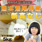 【果之蔬-全省免運】日本熊本縣吉野梨5~7入原裝【5公斤±10%/盒 每顆約800g】