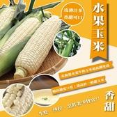 買5台斤送5台斤【果之蔬-全省免運】爆漿玉米-台灣北海道牛奶水果玉米【總共10台斤±10%】