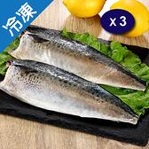 挪威鹽漬鯖魚片140~180G/片X3【愛買冷凍】