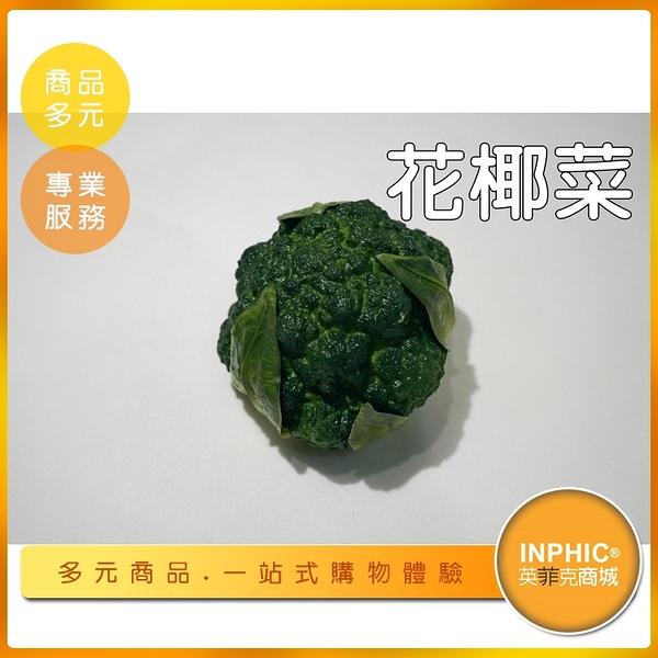 INPHIC-花椰菜模型 十字花科 綠花椰菜 青花菜 蔬菜-IMFP061104B