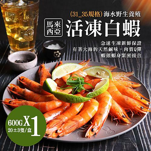 【屏聚美食】特大馬來海水養殖活凍31/35生白蝦1包(600G/約20尾)任選_第2件以上每件↘350元