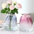 簡約玻璃花瓶擺件插干花水培花瓶北歐透明玻...