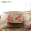 花盆騰陽簡約多肉花盆綠植非塑料創意紫砂復...