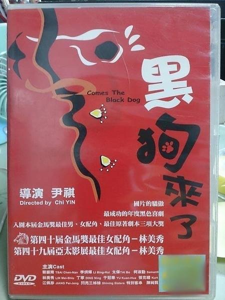 挖寶二手片-Z57-032-正版DVD-華語【黑狗來了】-林美秀 蔡振南
