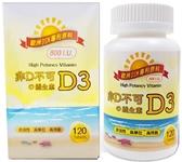【康健天地】非D不可の維生素D3(800IU,120顆/瓶)