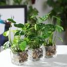 北歐仿真植物假綠植擺件客廳餐桌茶幾辦公室小盆栽室內裝飾花多肉 【優樂美】