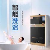220V漏保燃氣瓦斯熱水器家用煤氣天然氣液化氣即熱恒溫強排式LXY2909【東京潮流】