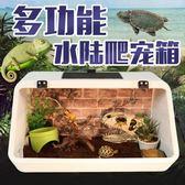 爬蟲用品 水陸兩用飼養箱烏龜缸 壓克力箱 陸龜蜥蜴守宮保溫箱子 igo